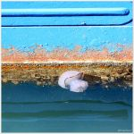 Floating in between... by Michel-Lag-Chavarria
