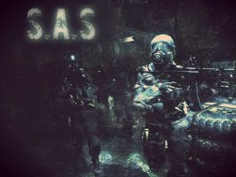 S.A.S by LordHayabusa357
