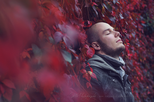 Red ivy by Estelle-Photographie