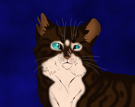 Hawkfrost by TheRealBramblefire