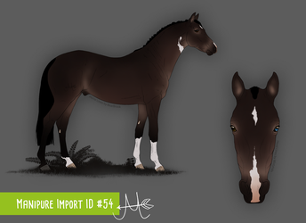 Manipure Import 54 / for CalyArt by chelissima