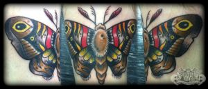 Moth by state-of-art-tattoo