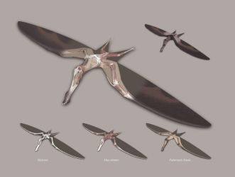 The Structure of a Pterosaur by jconway