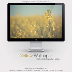 Yellow Wallpaper by MrFolder