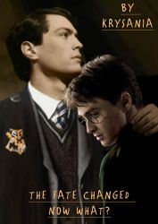 Tom Riddle/Harry Potter The Fate Changed Now What by Tatgoat