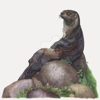 The Majestic Otter by ZHField