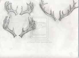 Deer Antler Sketches by FrenchTrotter