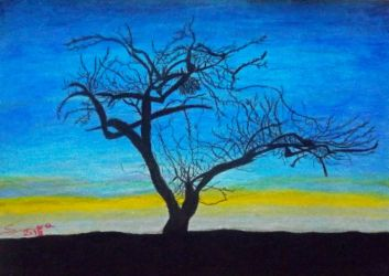 Dark tree sunset by Sara0TH
