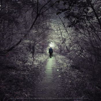 I Will Walk Away From You by soulofautumn87