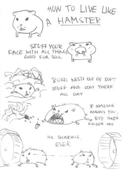 How to live like a hamster by Rorelse