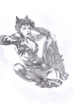 Catwoman pinup by danistrips