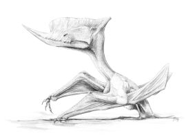 The Ugliest Pterosaur by Qilong