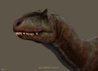 Allosaurus fragilis by Frank-Lode