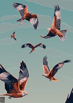 Red Kites by FionaCreates