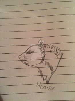 Cat doodle by briannamartin76