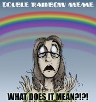 Double Rainbow Meme by Expression