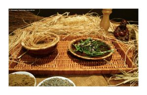 Fake Cookbook - Straw Soup by Jesterbrand
