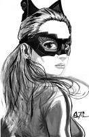 Anne Hathaway Catwoman by s133pDEADart