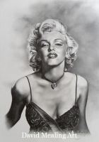 Marilyn Monroe by Drawing-Dude-Dave