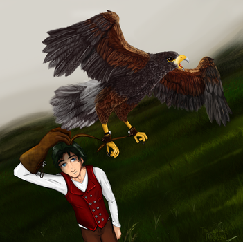 The Falconer by Nomati
