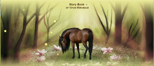 Story Book by NorthernMyth