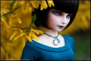 Blue and yellow by Angie-Chan070707