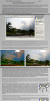 Introduction to Camera Raw by kyl191
