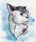 Raffle Prize: Watercolor Cat by JcArtSpace