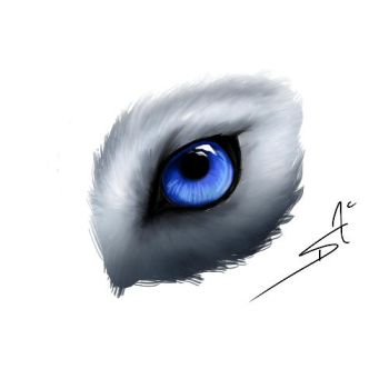 Wolf eye by DSA09