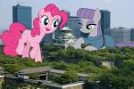 Pies in Osaka by TheOtterPony