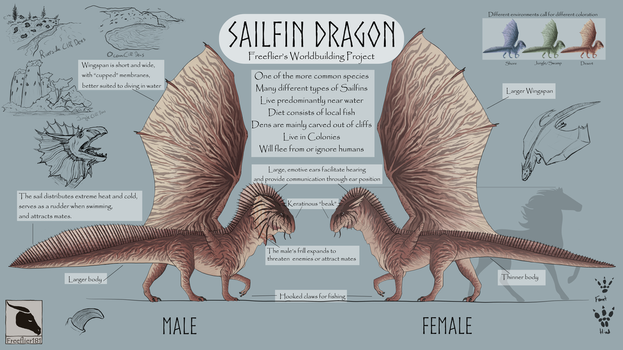 Sailfin Dragon Reference Sheet by Freeflier181