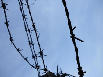 barbed heaven by avikdey