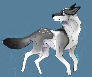 Atlas - wolf Amino request  by Ace-of-Wolvz