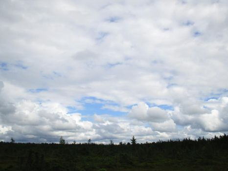 Clouds Over the Bog 1 by ChronosCat