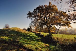 Autumn at the Giant's Ring by Gerard1972