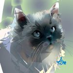 Grey cat by LimKis