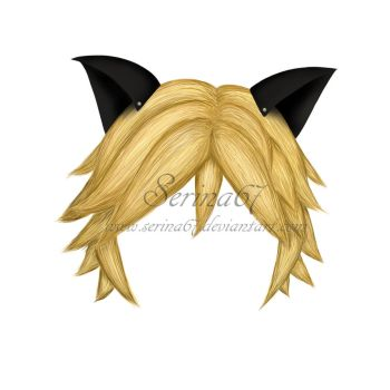 Cat Noir's Hair by Serina67