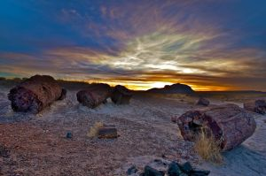 Petrified Sunset by wmandra