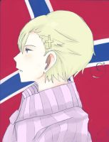NORWAY!!!!!!!:3 by Ispeakhuman