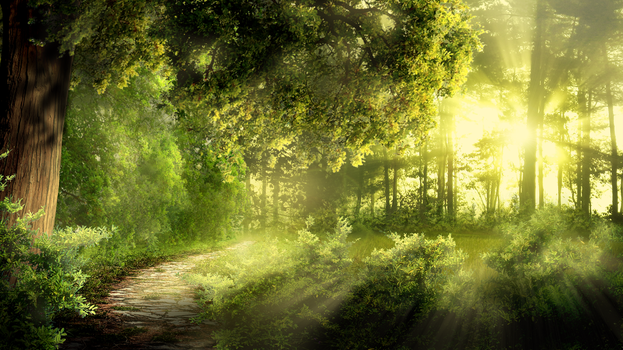 Commission #8: Forest day by Martith