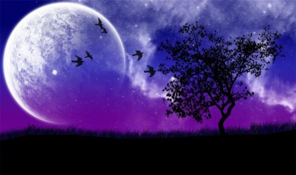 Moonlight by tbg-stock-images