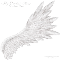 Flared Wing - White by Thy-Darkest-Hour