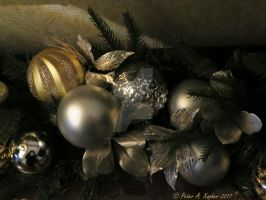 Silver and Gold by peterkopher