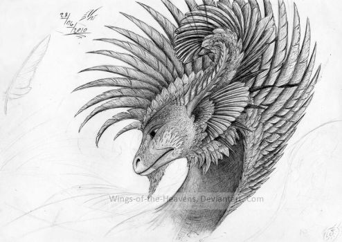 Feathered dragon by Wings-of-the-Heavens