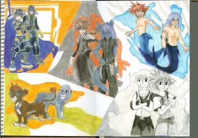 Riku and Sora's Forms by strawhatkitty