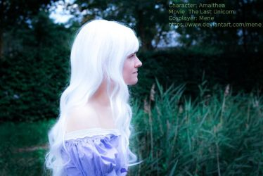 [Cosplay - The Last Unicorn] Outside by mene