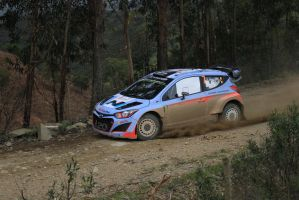 2014, Thierry Neuville, Hyundai, Ourique, Portugal by F1PAM