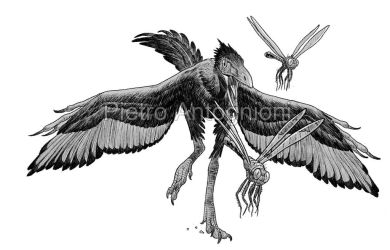 Archaeopteryx by pietro-ant