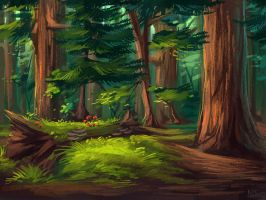 Northern call: Redwoods by Chickenbusiness