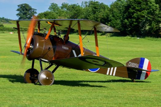 Sopwith F.1 Camel by Daniel-Wales-Images